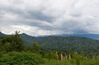 Ugandafield